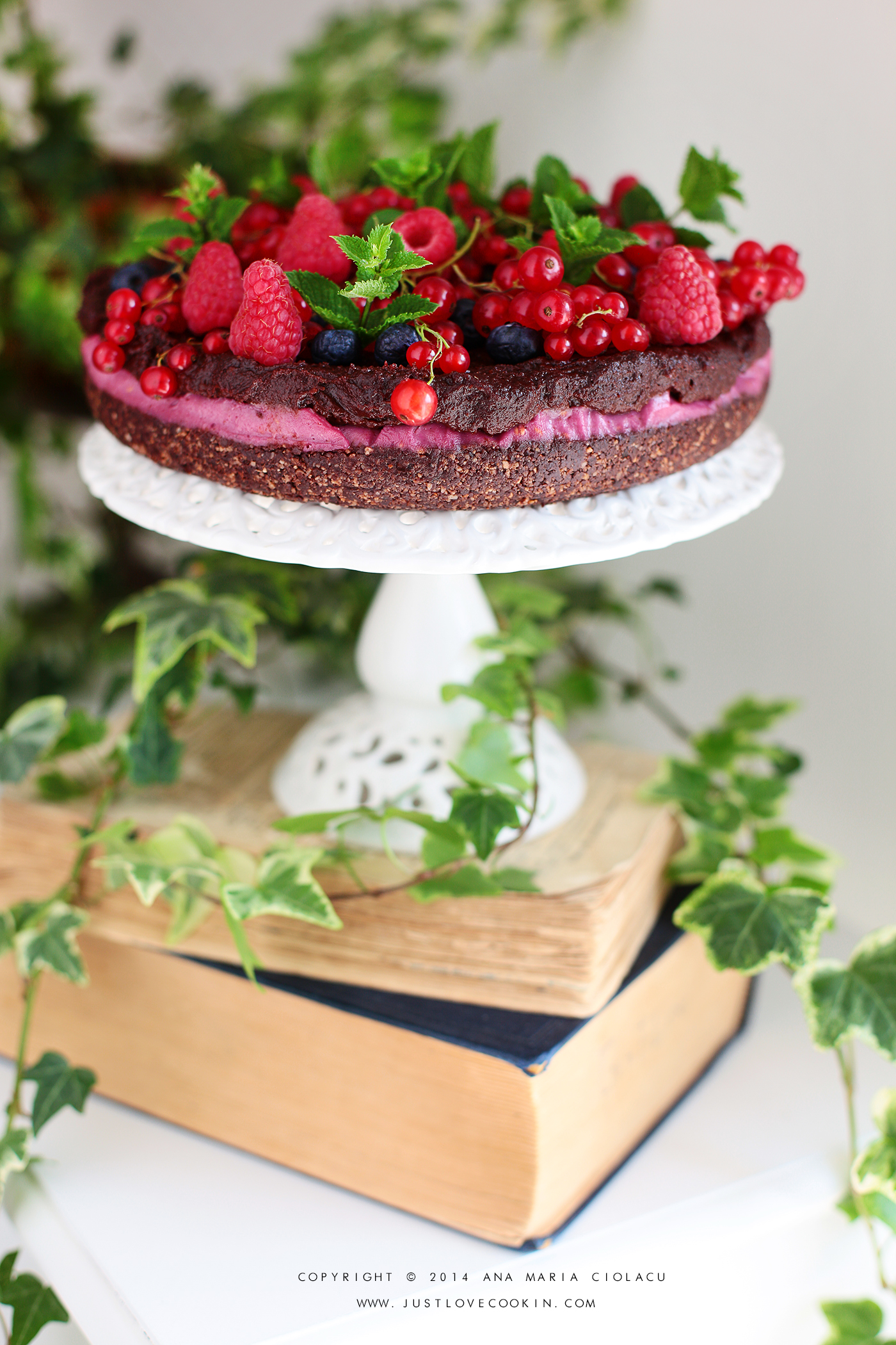 Raw Vegan Chocolate and Raspberry Brownie Cake 13