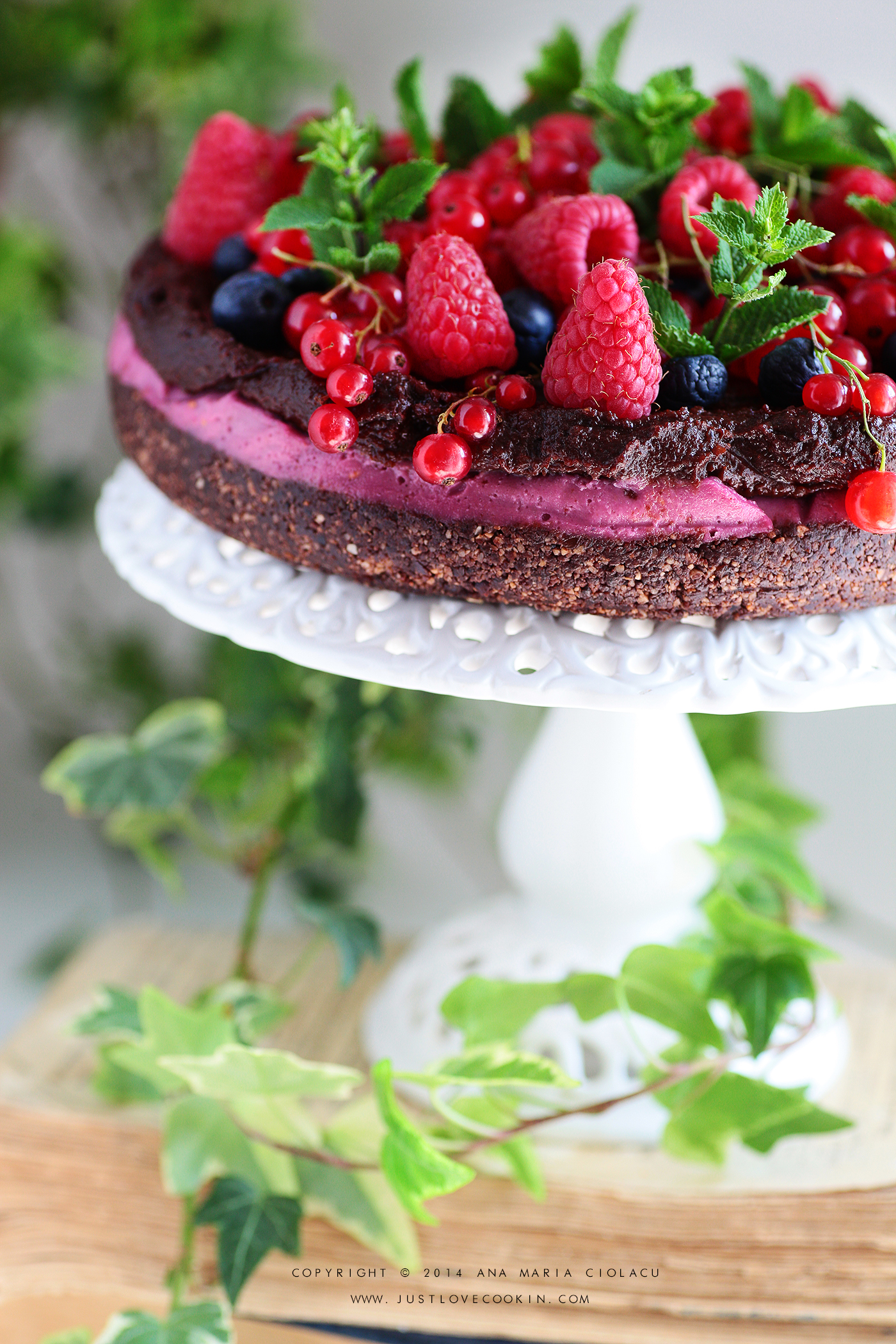 Raw Vegan Chocolate and Raspberry Brownie Cake 18