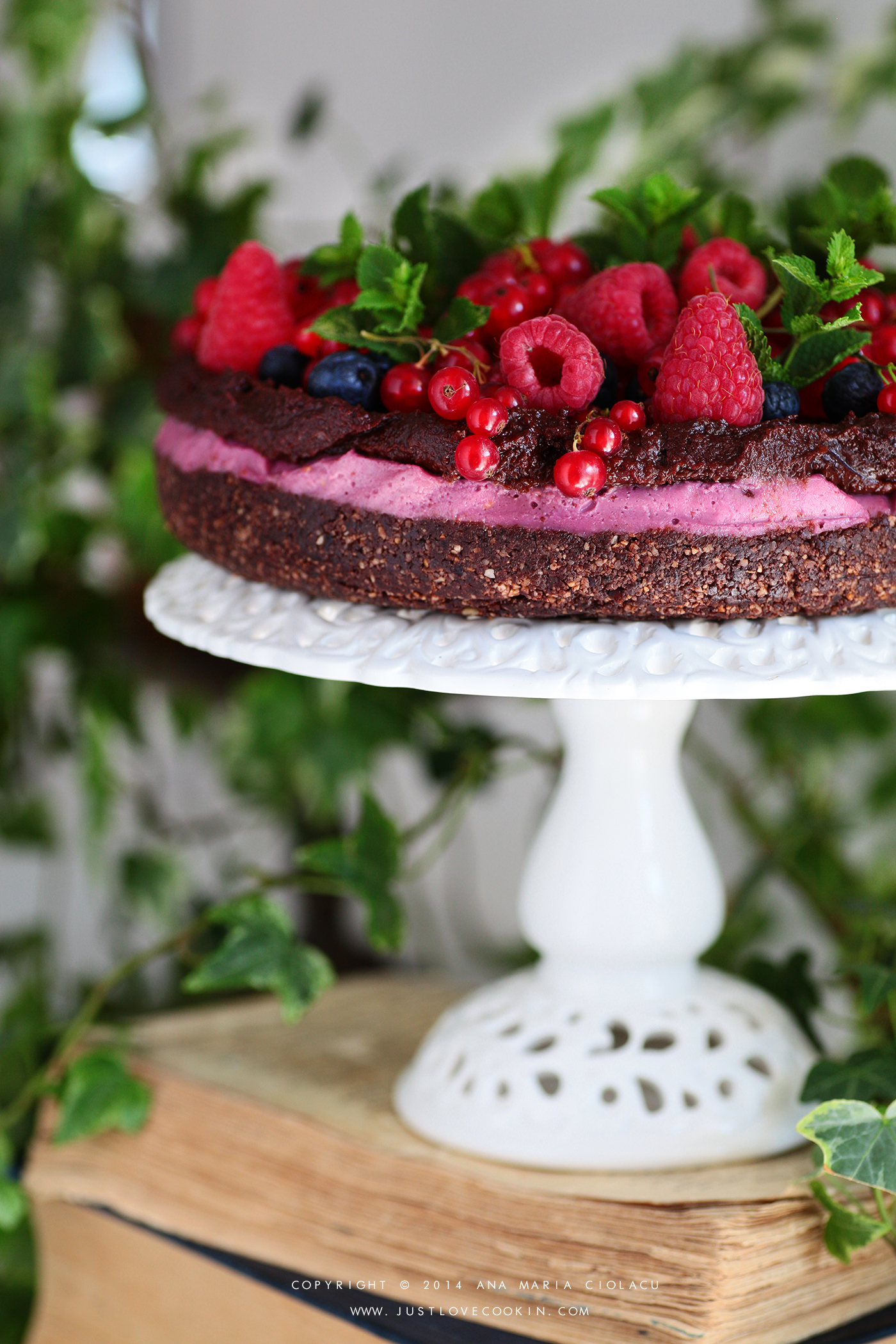 Raw Vegan Chocolate and Raspberry Brownie Cake 20