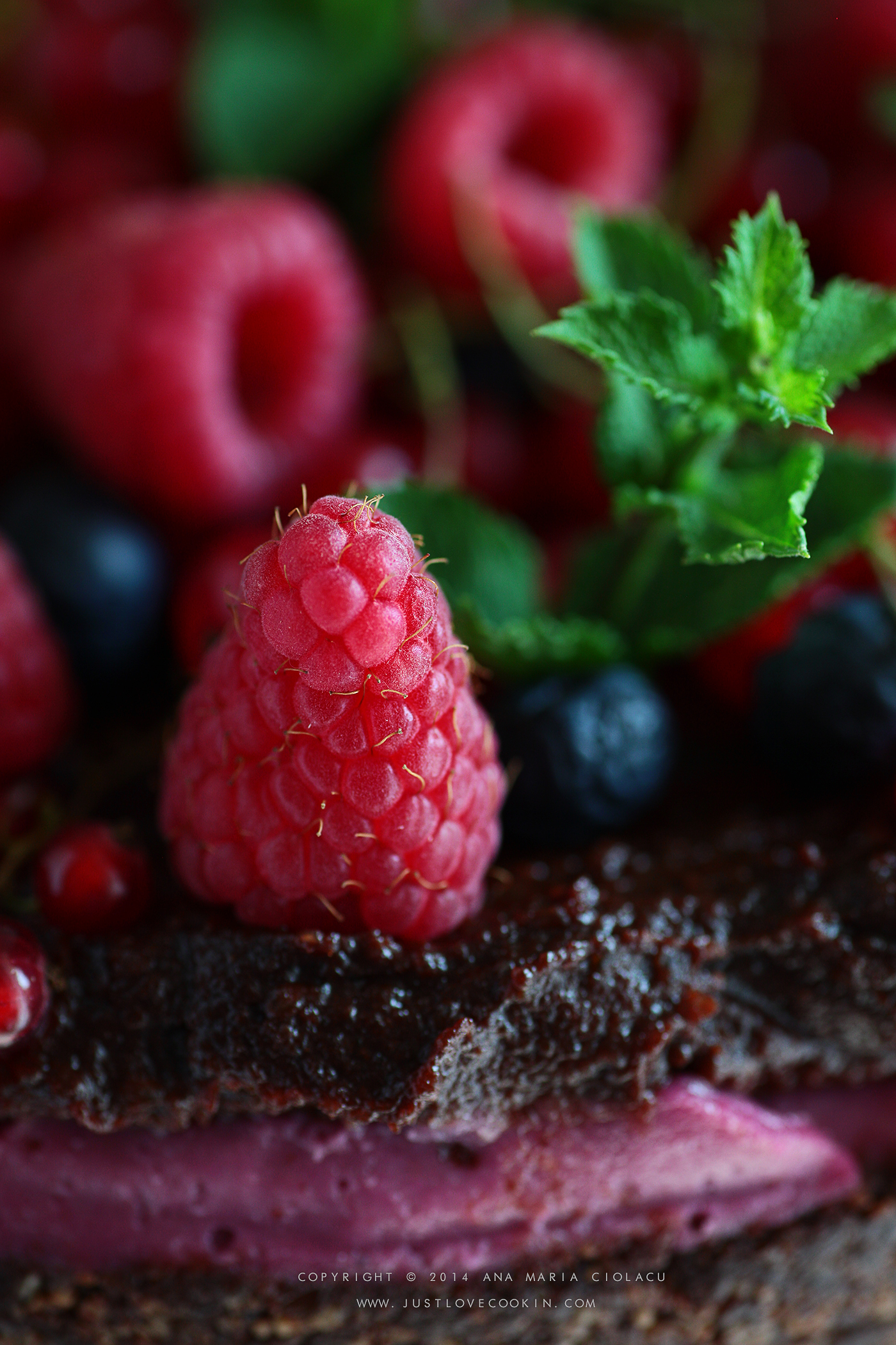 Raw Vegan Chocolate and Raspberry Brownie Cake 24