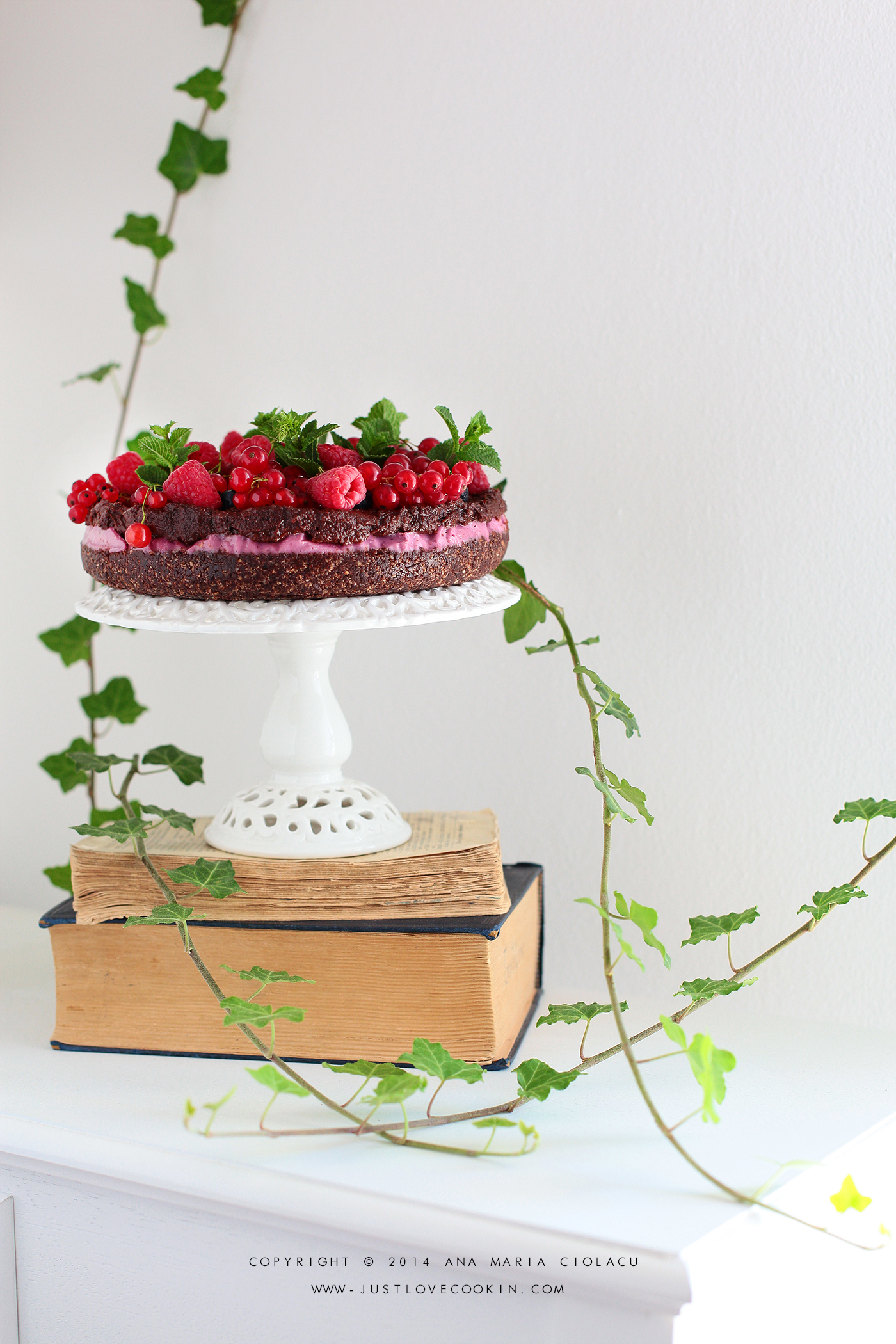 Raw Vegan Chocolate and Raspberry Brownie Cake 3