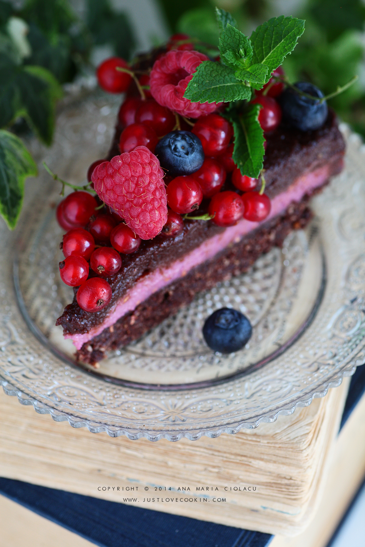 Raw Vegan Chocolate and Raspberry Brownie Cake 5