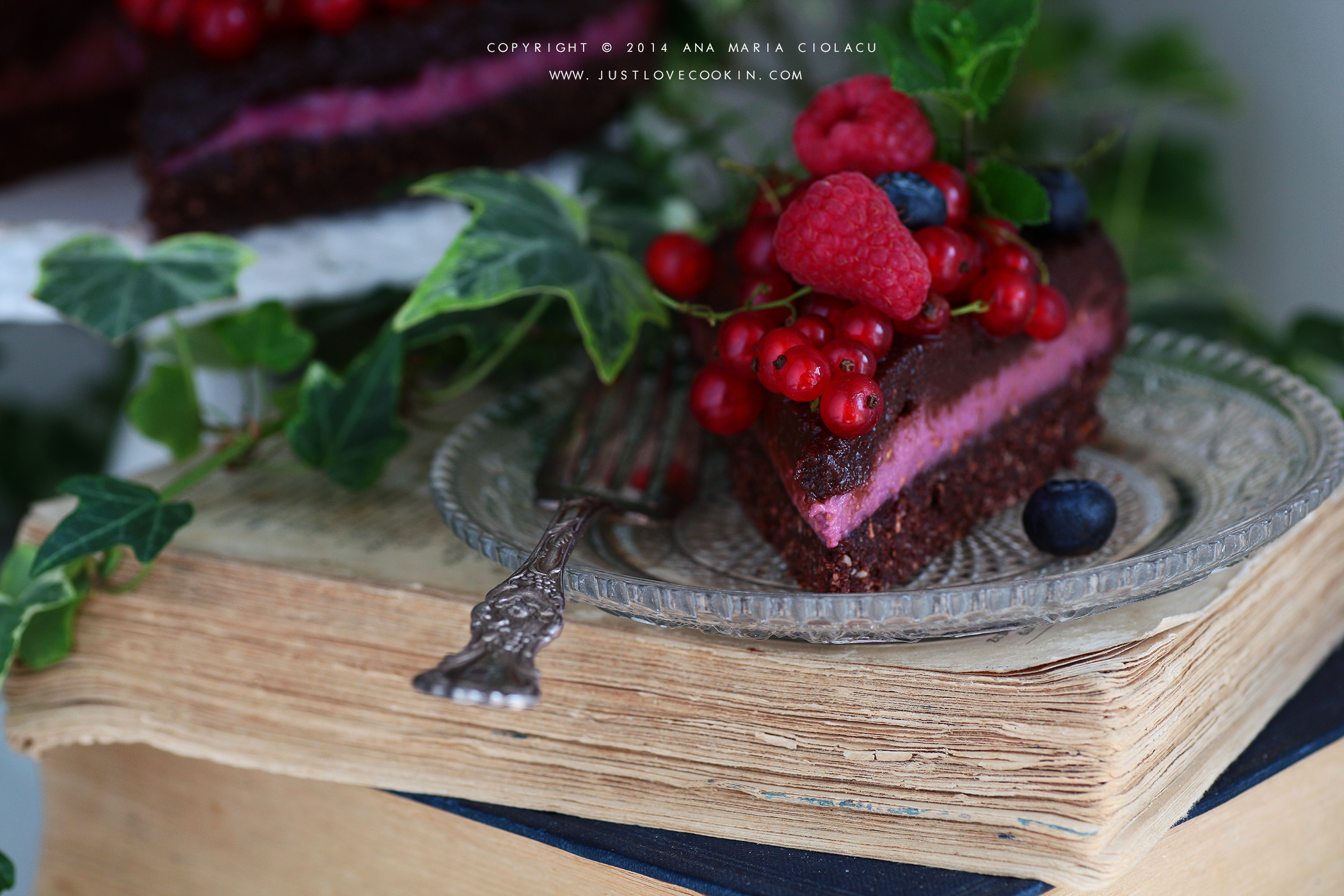 Raw Vegan Chocolate and Raspberry Brownie Cake 6