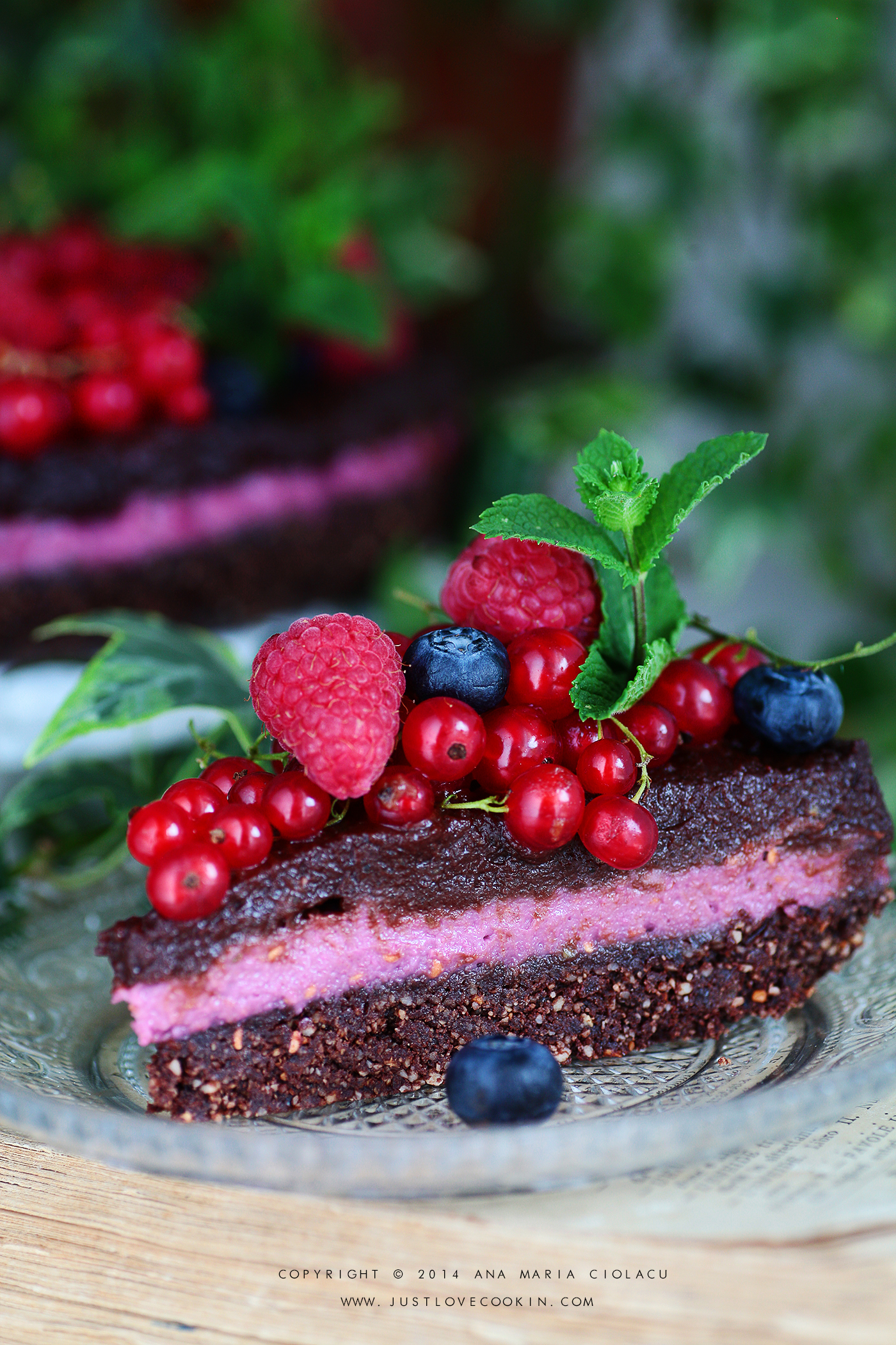 Raw Vegan Chocolate and Raspberry Brownie Cake 8